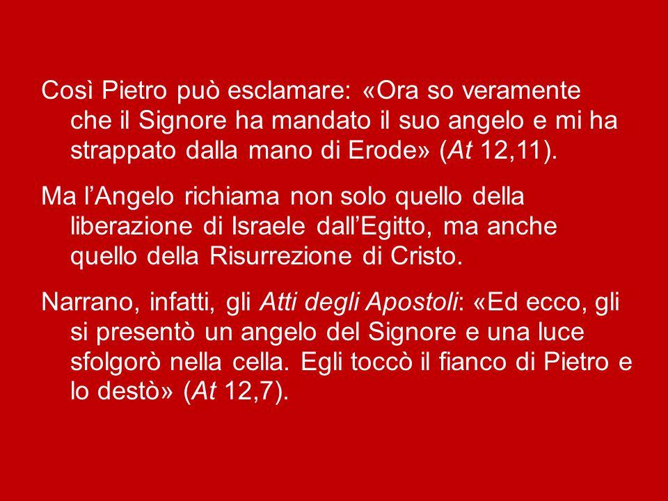 Così Pietro può esclamare: «Ora so veramente che il Signore ha mandato il suo angelo e mi ha strappato dalla mano di Erode» (At 12,11).