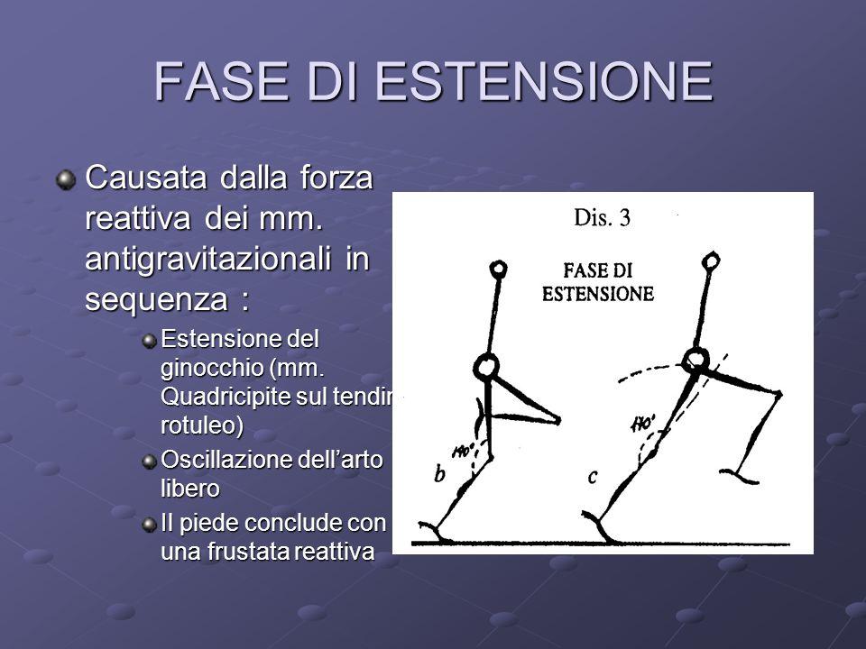 FASE DI ESTENSIONE Causata dalla forza reattiva dei mm. antigravitazionali in sequenza :