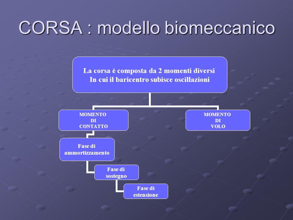 CORSA : modello biomeccanico