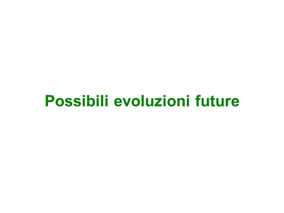 Possibili evoluzioni future