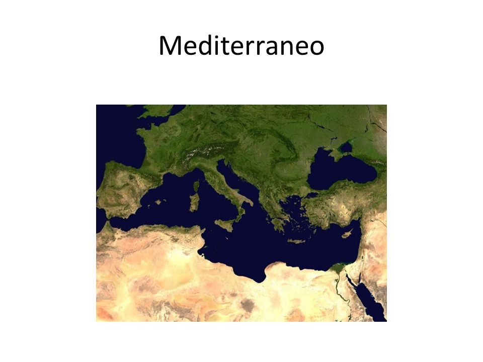 Mediterraneo http://it.wikipedia.org/wiki/Dieta_mediterranea