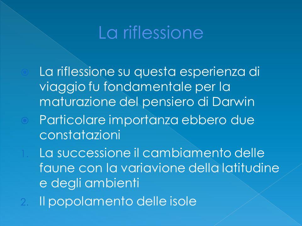 La riflessione La riflessione su questa esperienza di viaggio fu fondamentale per la maturazione del pensiero di Darwin.