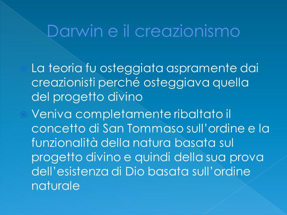 Darwin e il creazionismo