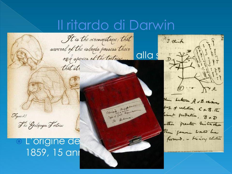 Il ritardo di Darwin