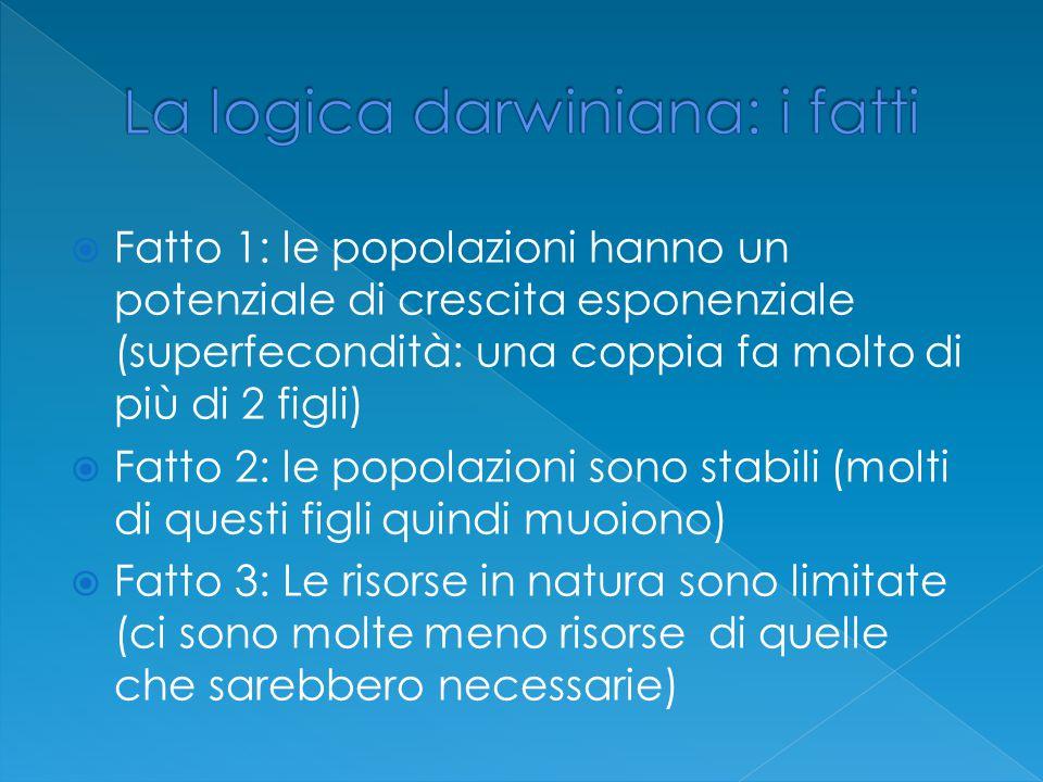 La logica darwiniana: i fatti