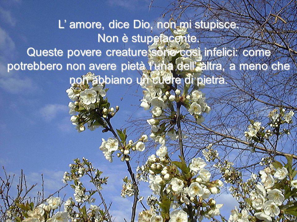 L' amore, dice Dio, non mi stupisce.