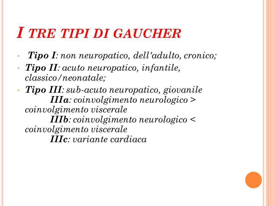I tre tipi di gaucher Tipo I: non neuropatico, dell adulto, cronico;