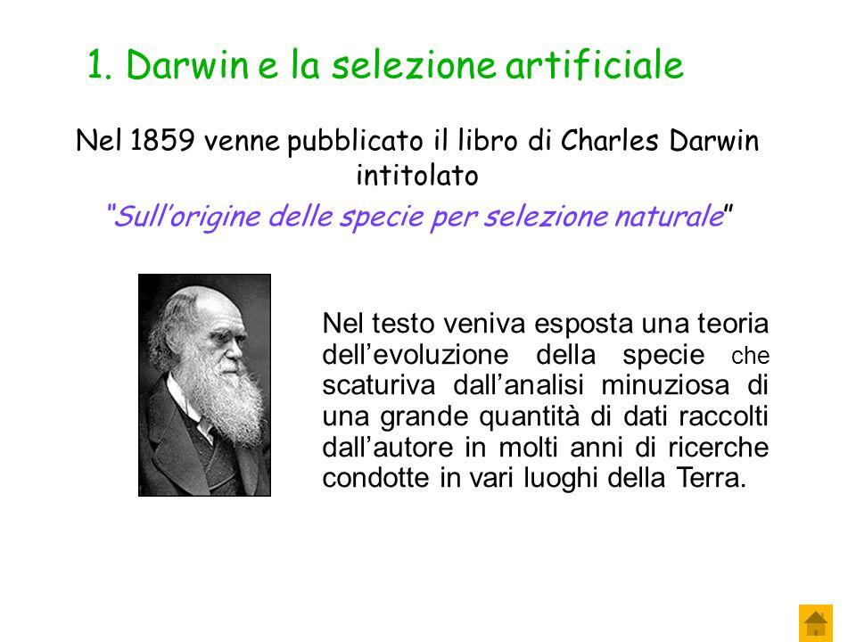 1. Darwin e la selezione artificiale