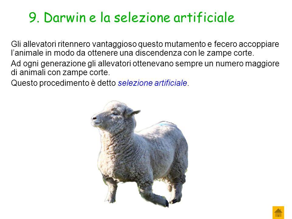 9. Darwin e la selezione artificiale