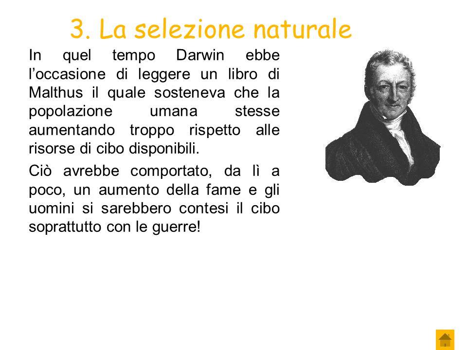 3. La selezione naturale