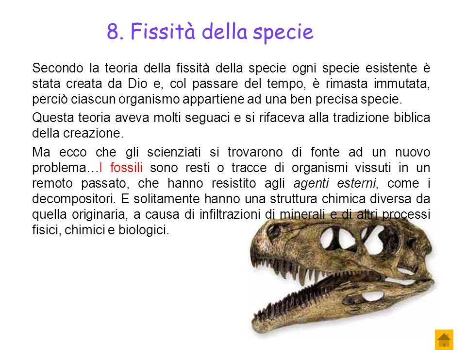 8. Fissità della specie