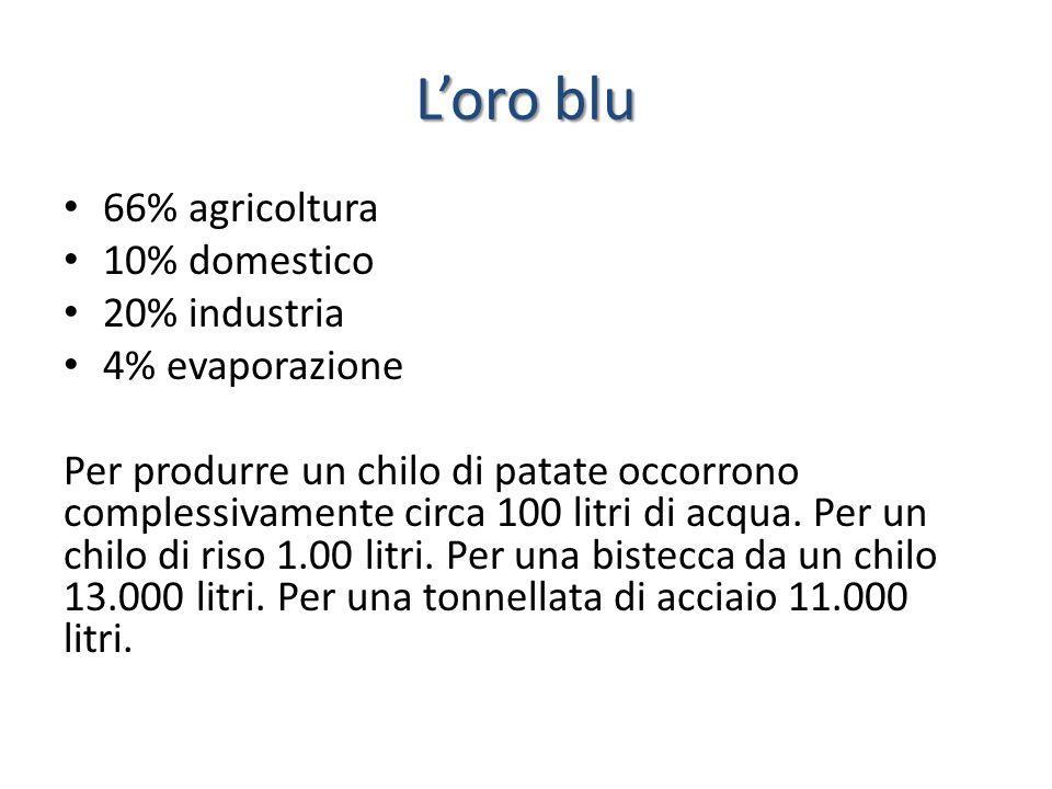 L'oro blu 66% agricoltura 10% domestico 20% industria 4% evaporazione