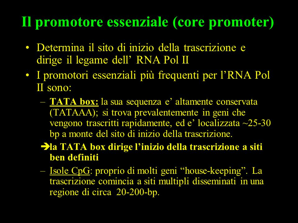 Il promotore essenziale (core promoter)