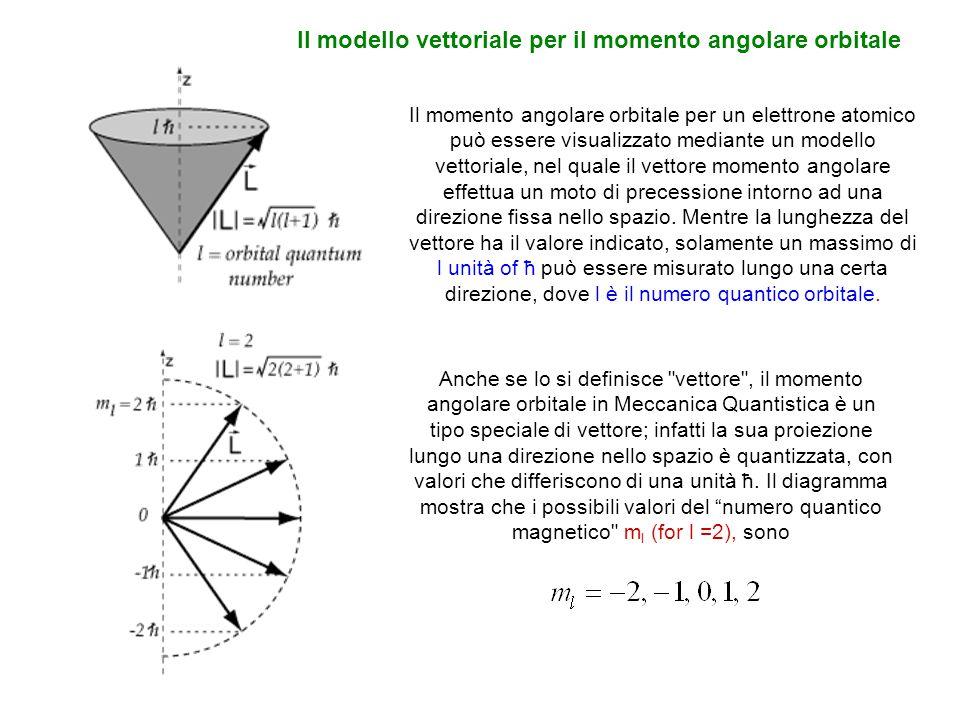 Il modello vettoriale per il momento angolare orbitale