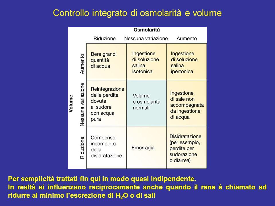 Controllo integrato di osmolarità e volume