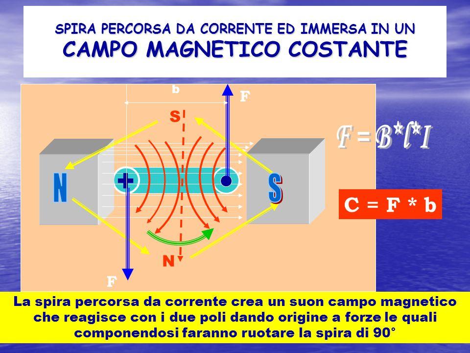 SPIRA PERCORSA DA CORRENTE ED IMMERSA IN UN CAMPO MAGNETICO COSTANTE