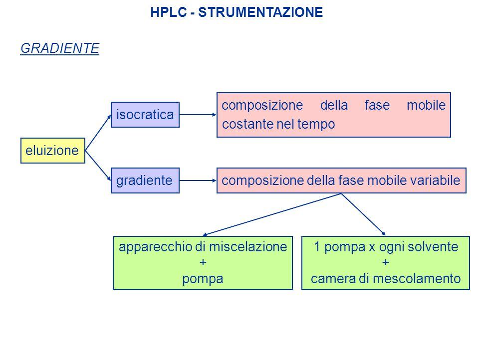 composizione della fase mobile costante nel tempo
