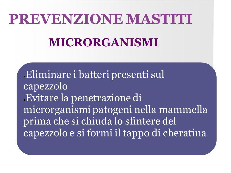 PREVENZIONE MASTITI MICRORGANISMI