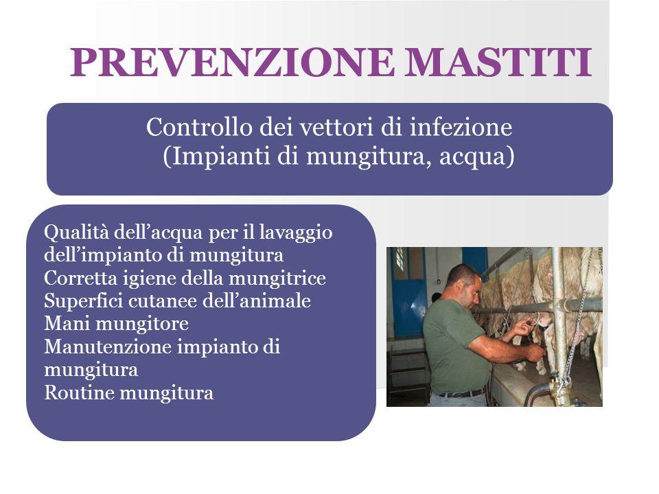 PREVENZIONE MASTITI Controllo dei vettori di infezione