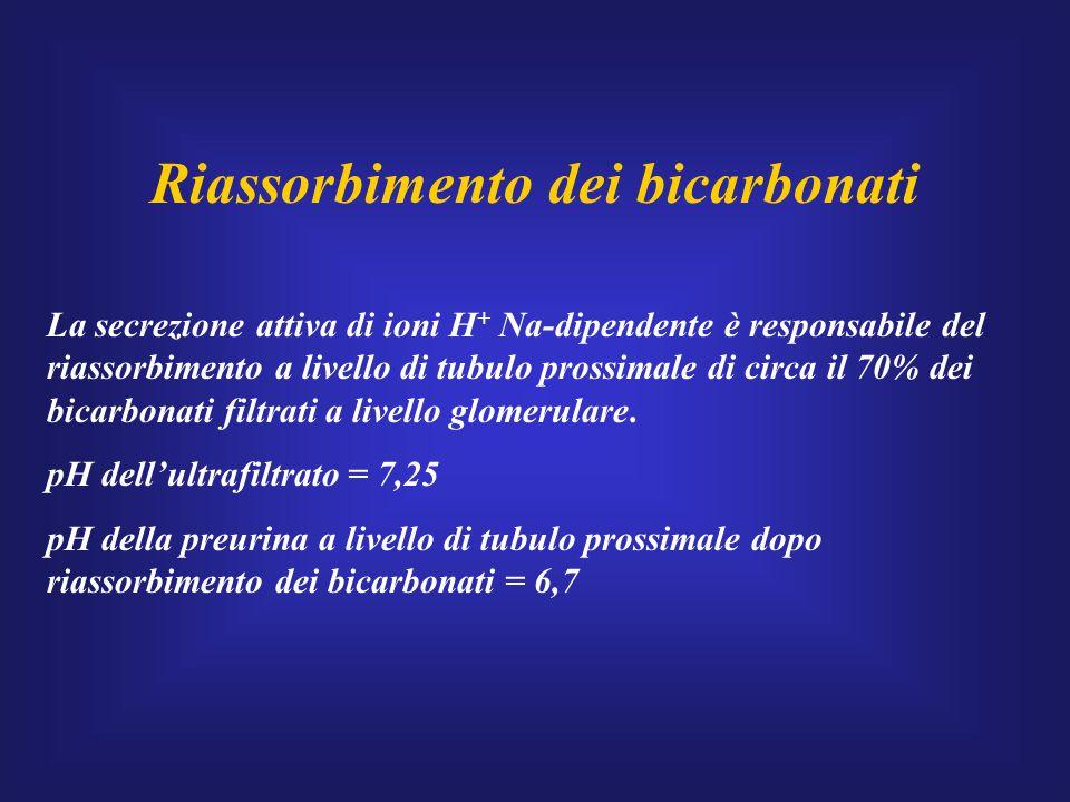 Riassorbimento dei bicarbonati