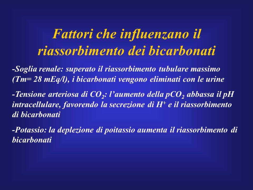 Fattori che influenzano il riassorbimento dei bicarbonati