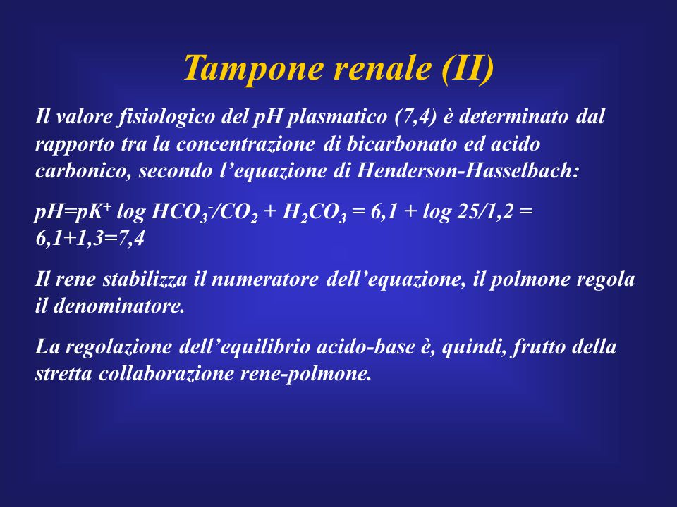 Tampone renale (II)