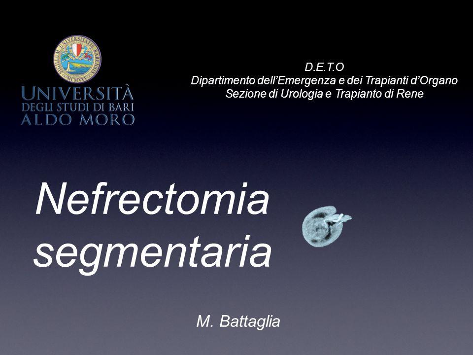 Nefrectomia segmentaria