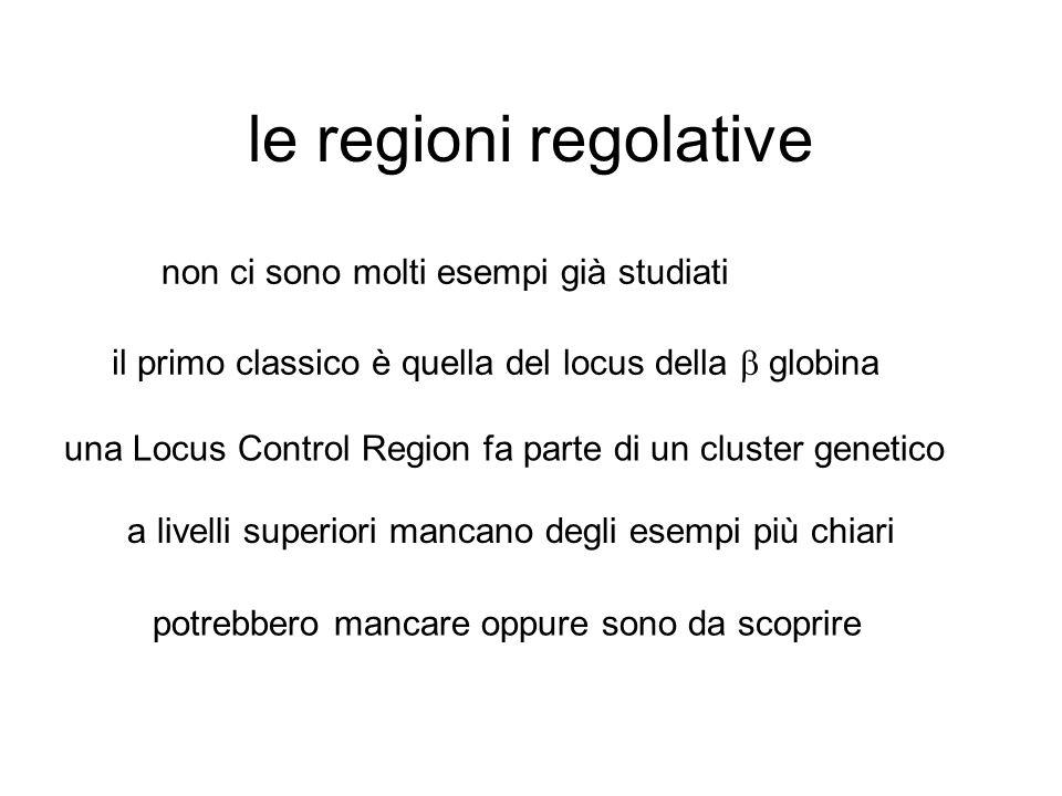 le regioni regolative non ci sono molti esempi già studiati