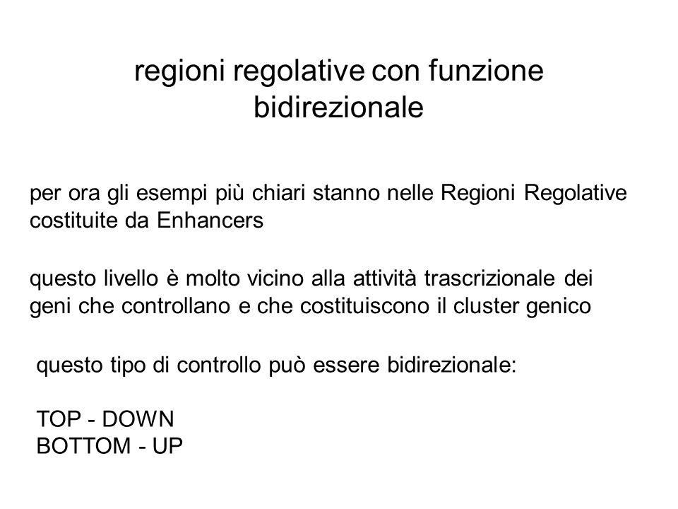 regioni regolative con funzione bidirezionale