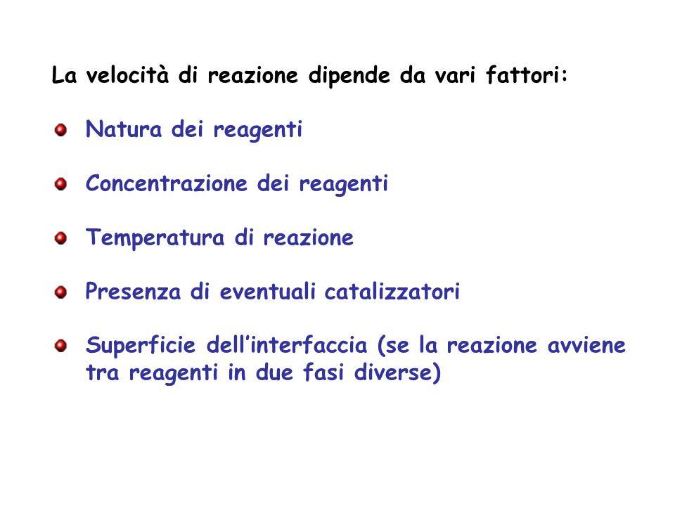 La velocità di reazione dipende da vari fattori: