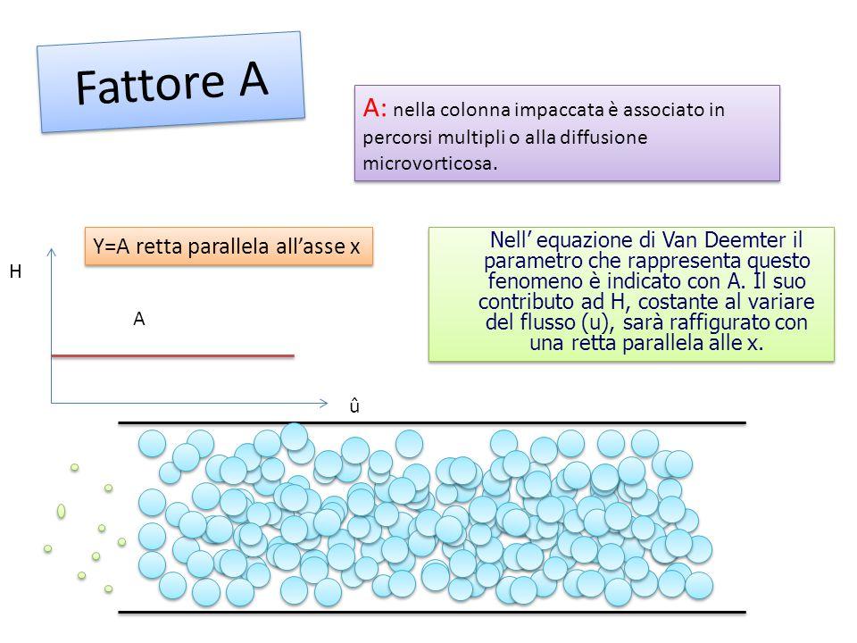 Fattore A A: nella colonna impaccata è associato in percorsi multipli o alla diffusione microvorticosa.