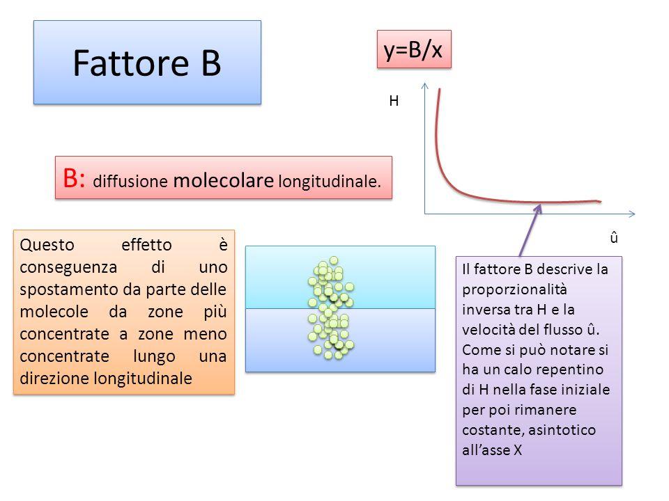 Fattore B B: diffusione molecolare longitudinale. y=B/x