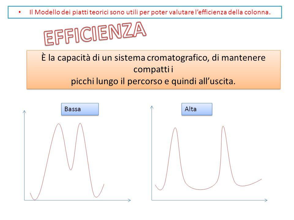 Il Modello dei piatti teorici sono utili per poter valutare l'efficienza della colonna.