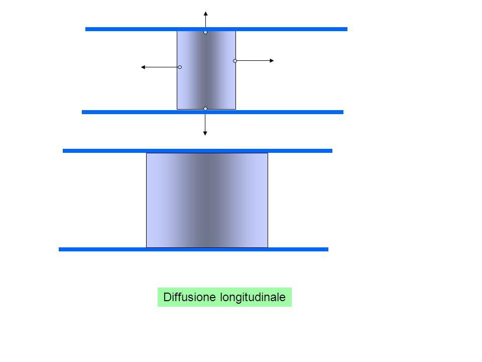 Diffusione longitudinale