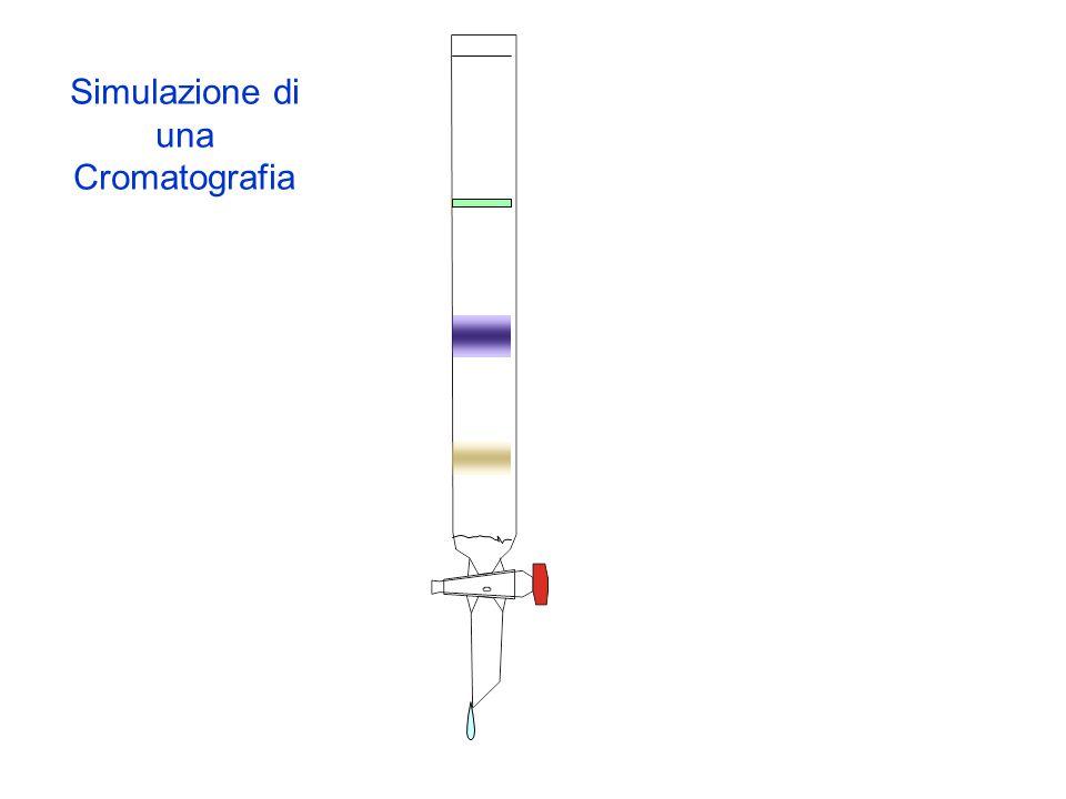 Simulazione di una Cromatografia