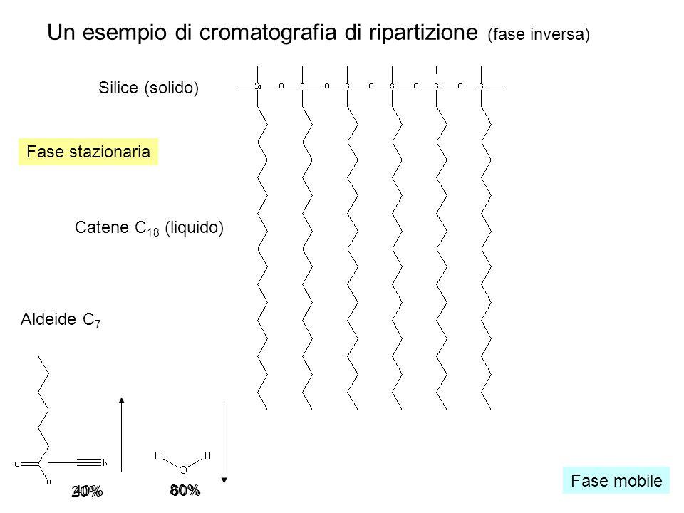 Un esempio di cromatografia di ripartizione (fase inversa)