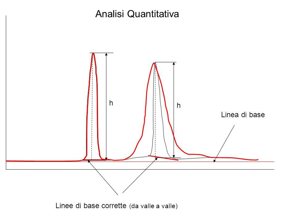 Linee di base corrette (da valle a valle)