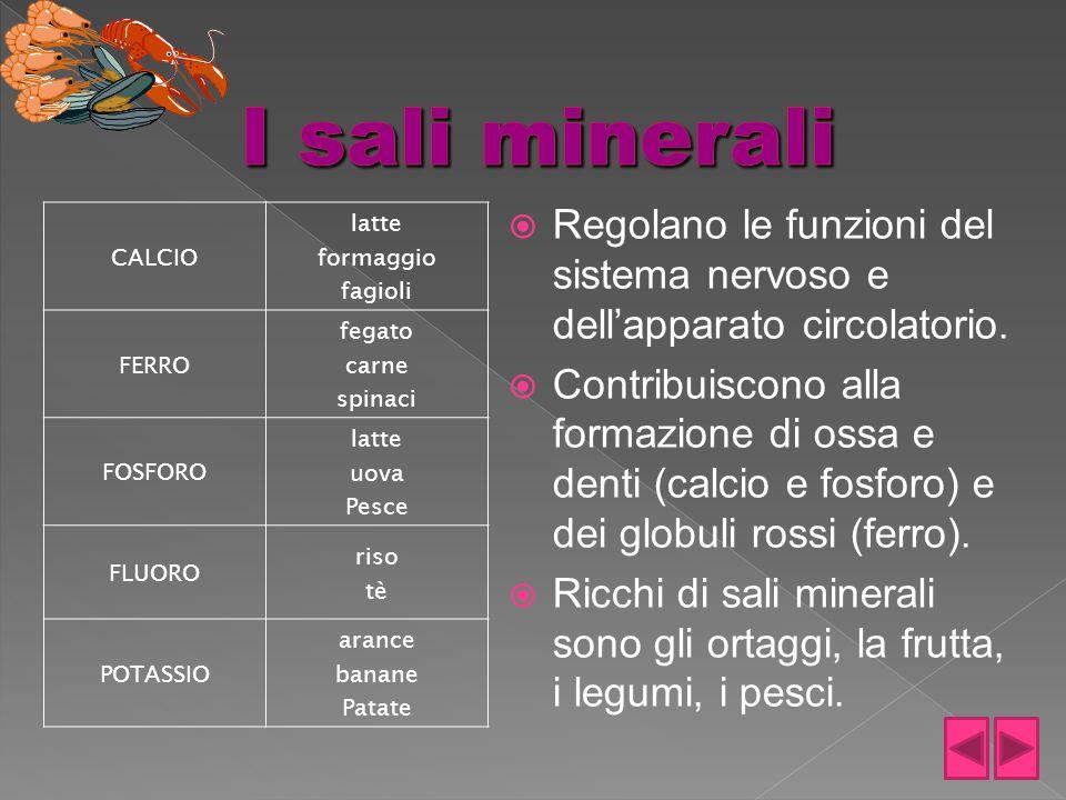 I sali minerali Regolano le funzioni del sistema nervoso e dell'apparato circolatorio.