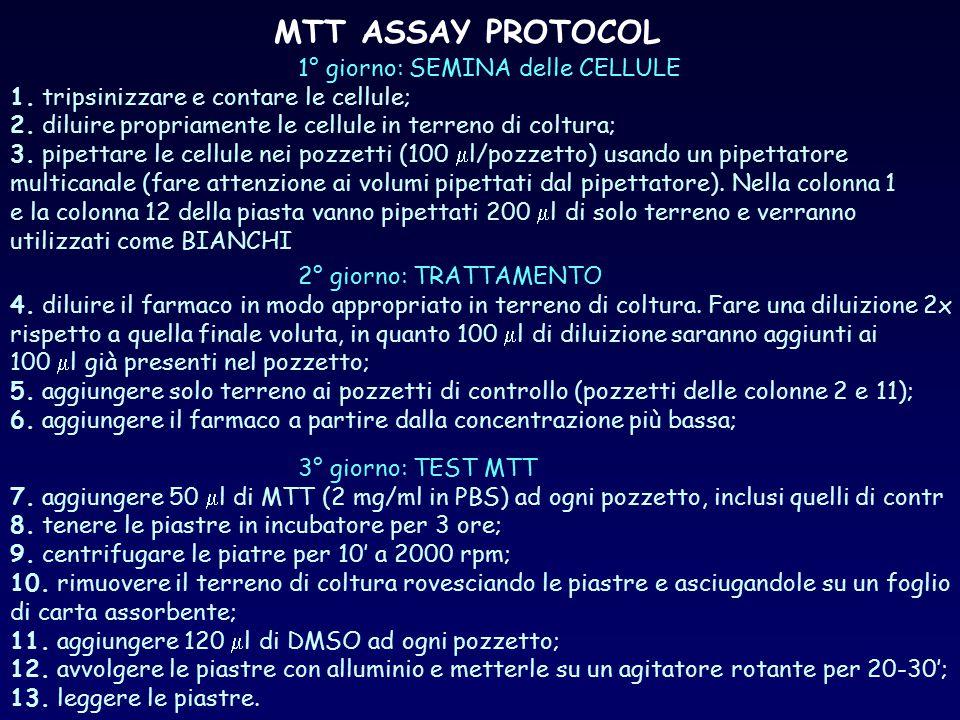 MTT ASSAY PROTOCOL 1° giorno: SEMINA delle CELLULE