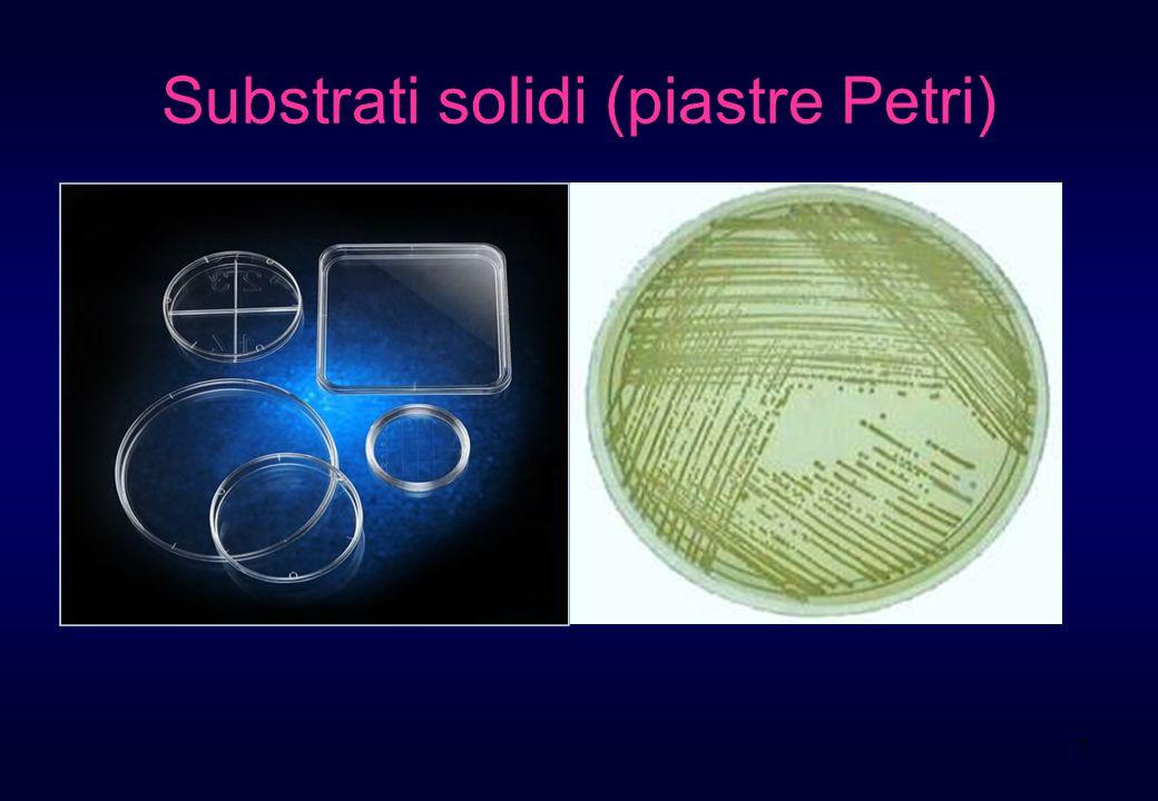 Substrati solidi (piastre Petri)
