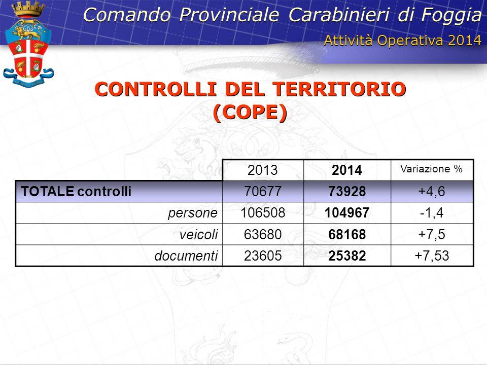 CONTROLLI DEL TERRITORIO (COPE)