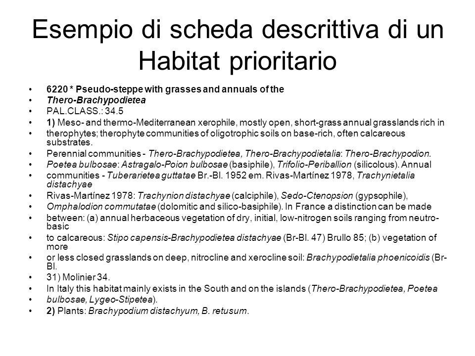 Esempio di scheda descrittiva di un Habitat prioritario