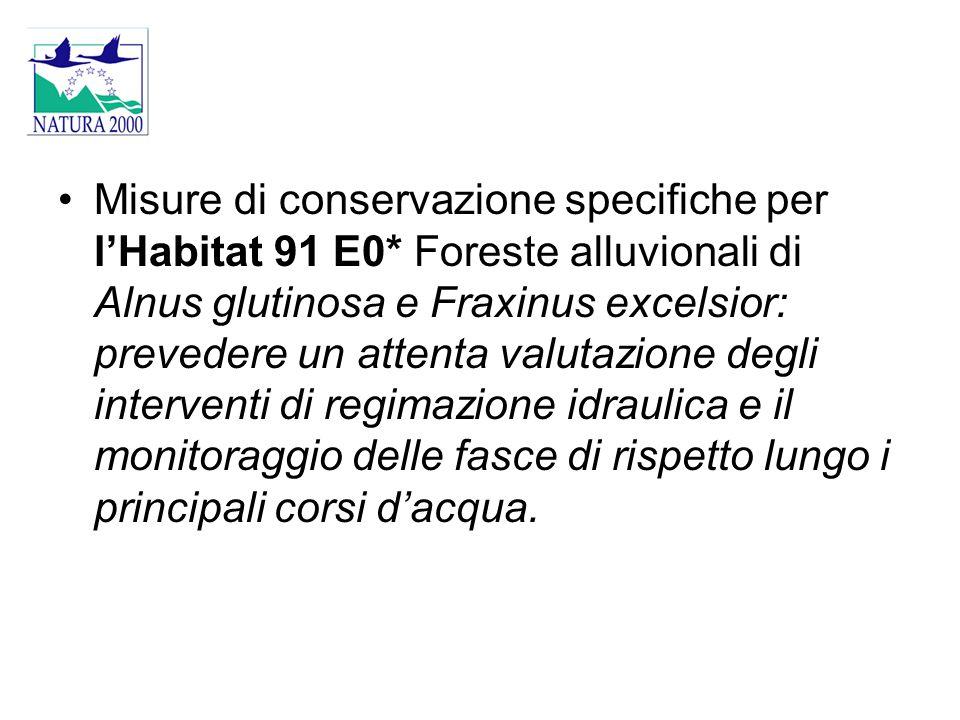 Misure di conservazione specifiche per l'Habitat 91 E0