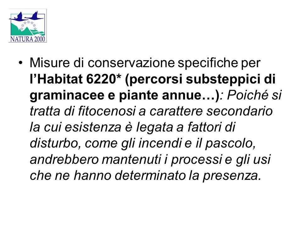 Misure di conservazione specifiche per l'Habitat 6220