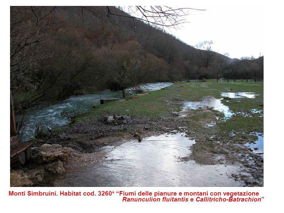 Monti Simbruini. Habitat cod. 3260