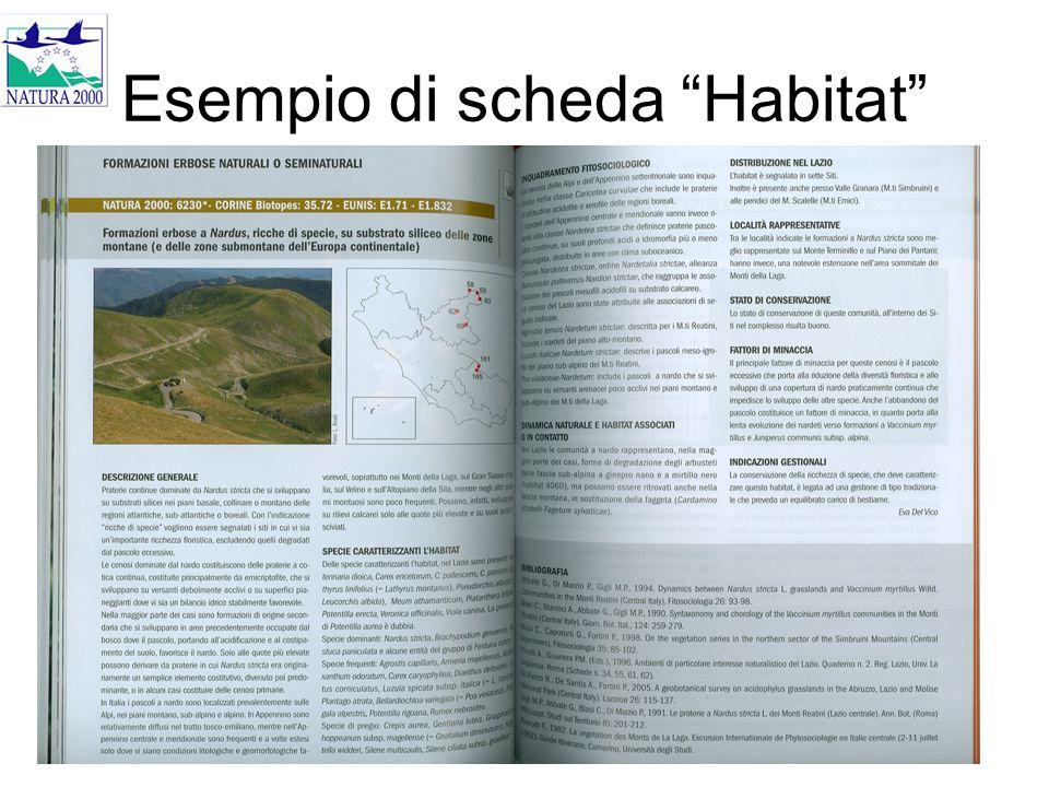 Esempio di scheda Habitat