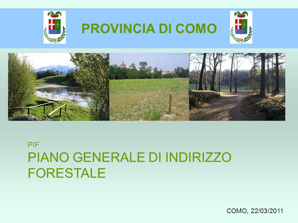 PROVINCIA DI COMO PIF PIANO GENERALE DI INDIRIZZO FORESTALE