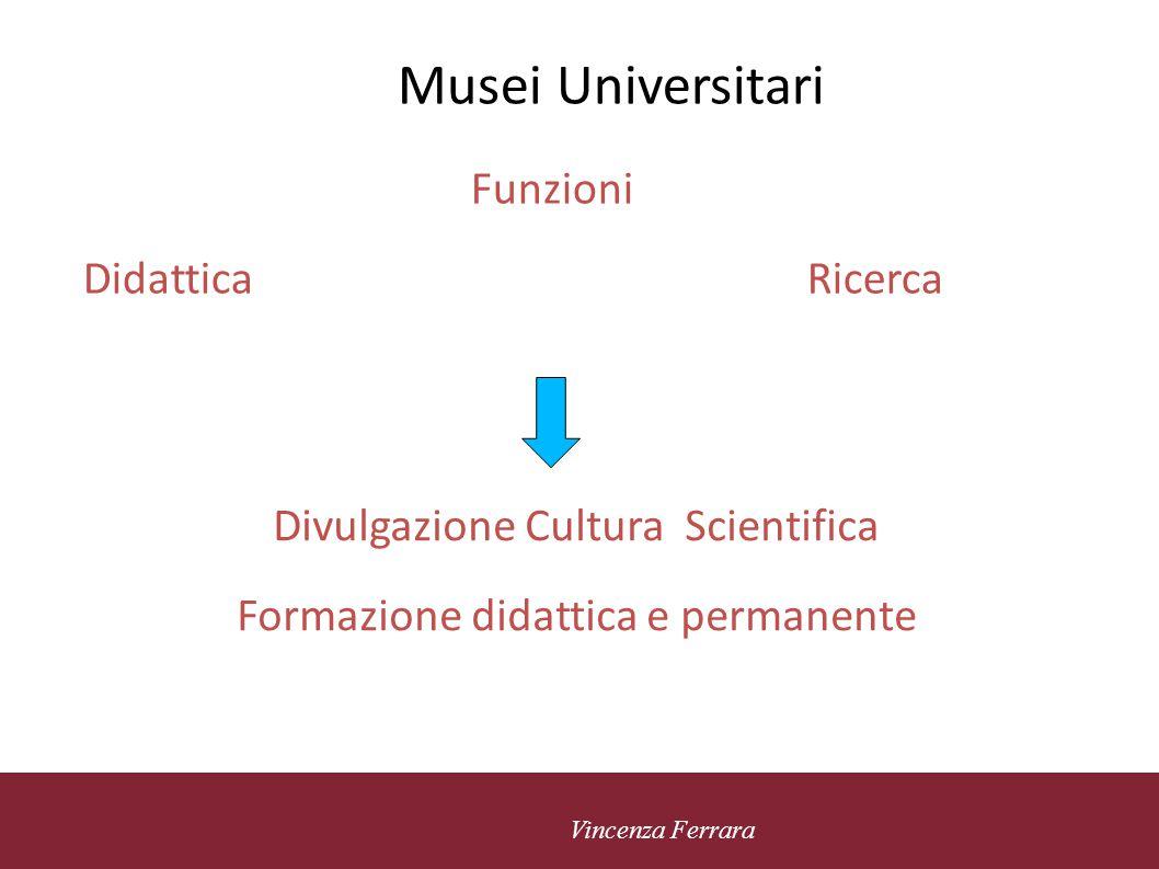 Musei Universitari Funzioni Didattica Ricerca