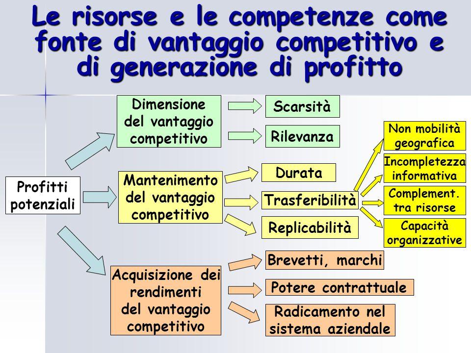 Le risorse e le competenze come fonte di vantaggio competitivo e di generazione di profitto