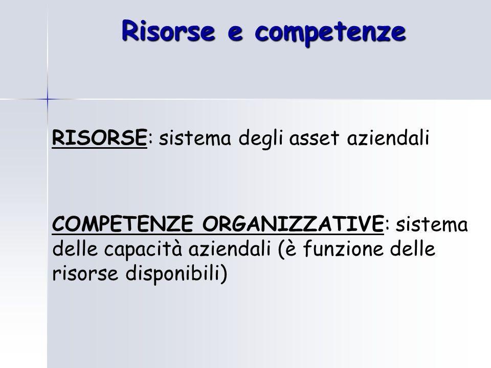 Risorse e competenze RISORSE: sistema degli asset aziendali